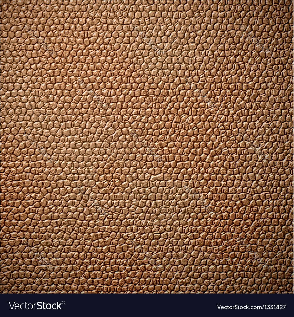 Leather texture vector   Price: 1 Credit (USD $1)
