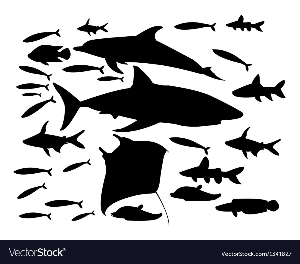 Underwater world of fish vector | Price: 1 Credit (USD $1)