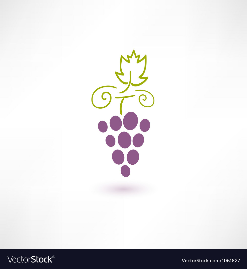Wine grape vector | Price: 1 Credit (USD $1)