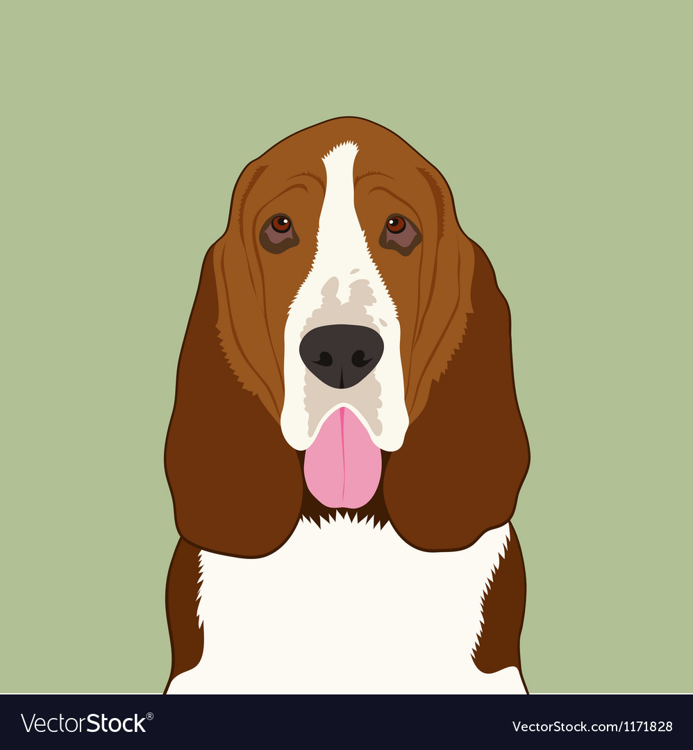 Basset hound dog vector | Price: 1 Credit (USD $1)
