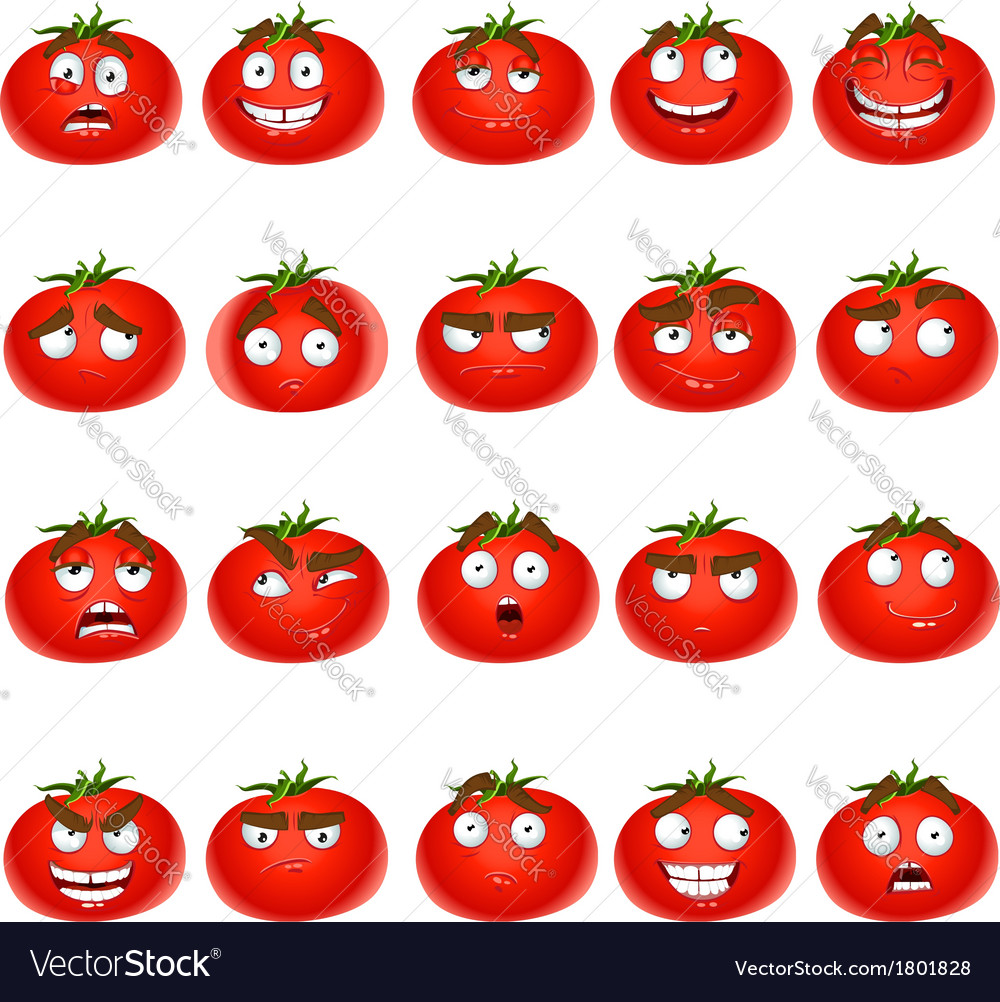 Cute cartoon tomato smile with many expressions vector | Price: 1 Credit (USD $1)