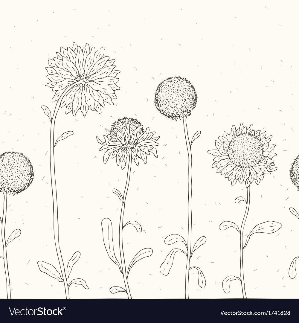 Hand drawn sunflower floral background vector | Price: 1 Credit (USD $1)