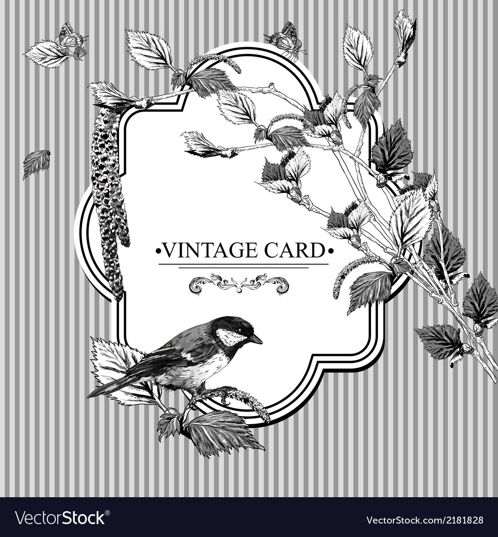 Vintage card with birch twigs and bird tit vector | Price: 1 Credit (USD $1)