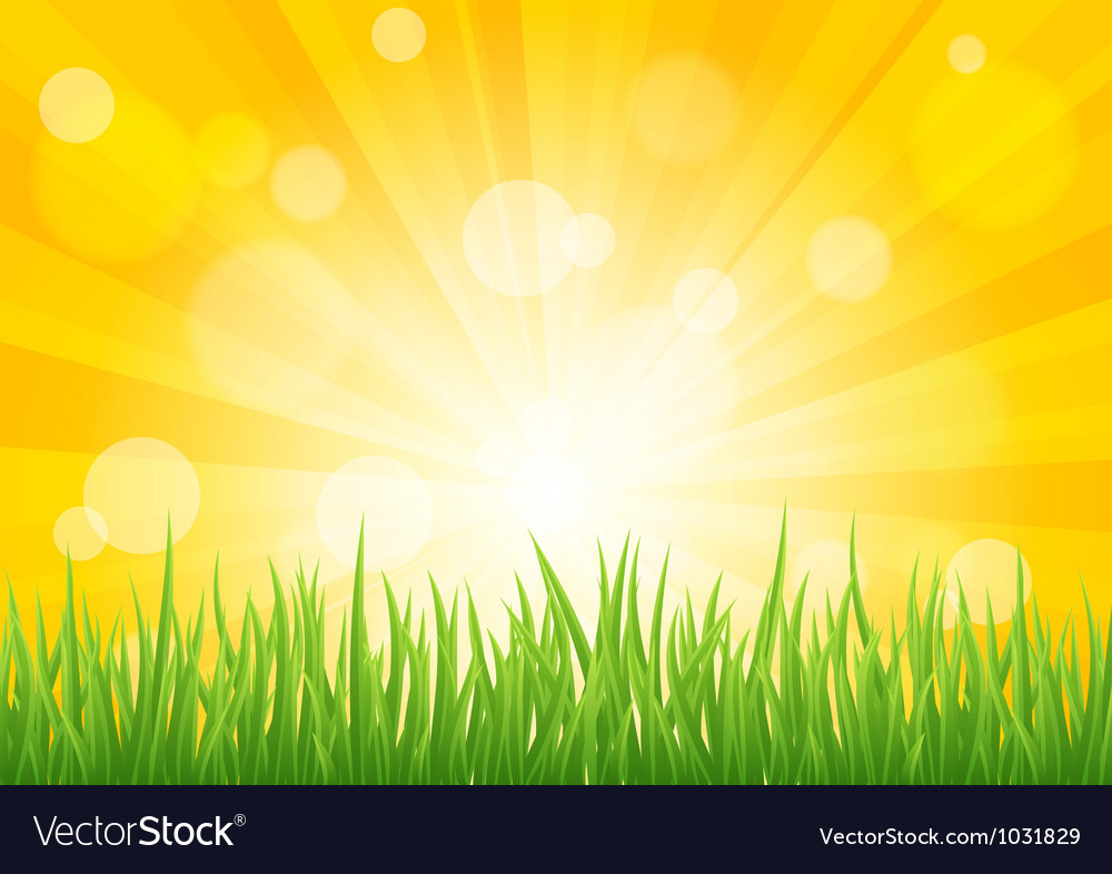 Bright sun effect with green grass field vector | Price: 1 Credit (USD $1)