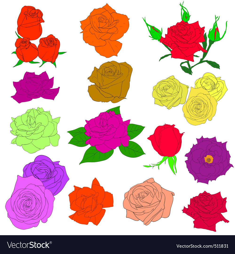 in hand drawn style roses vector eps 10 ill vector | Price: 1 Credit (USD $1)