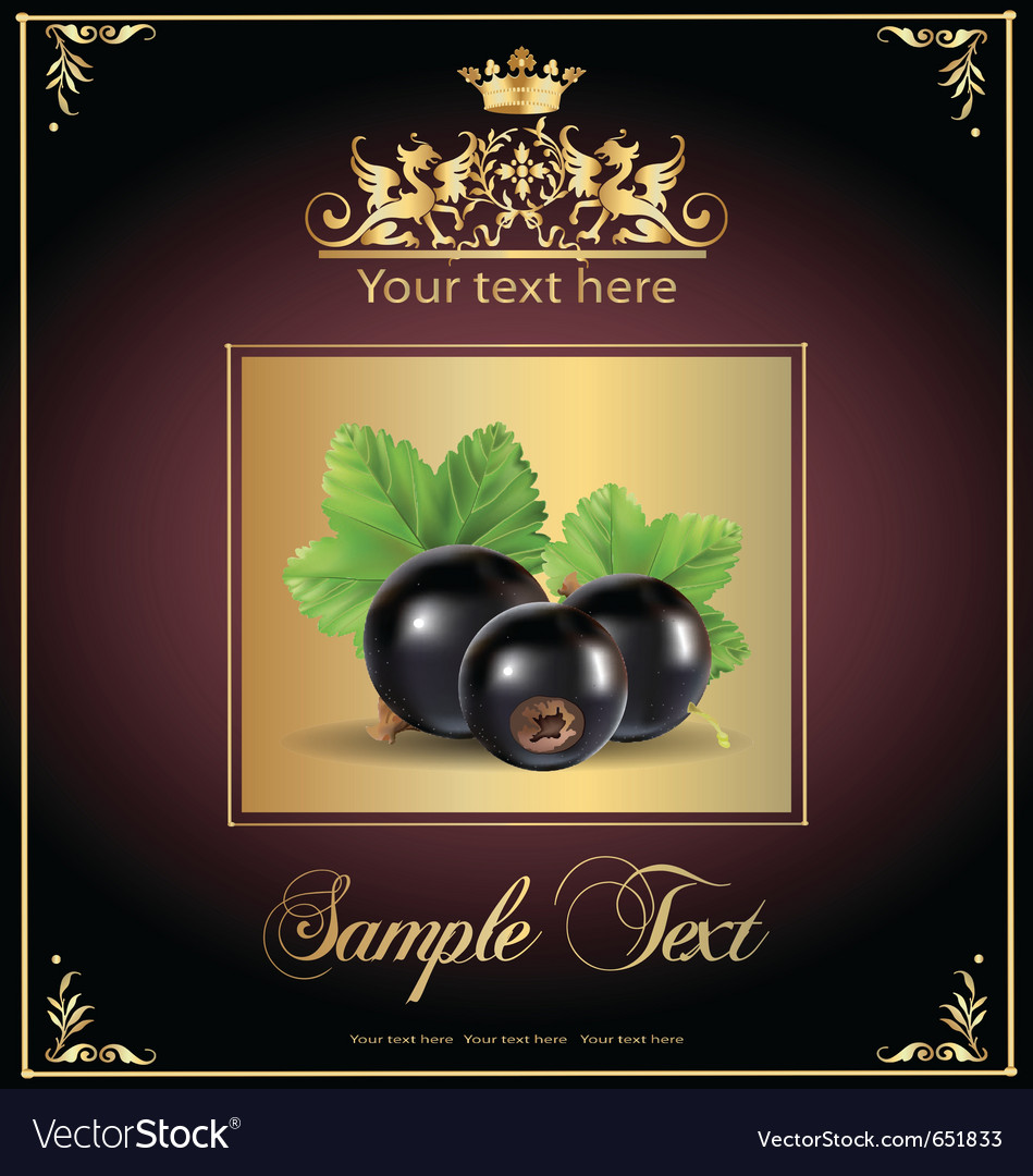 Blackberry vector | Price: 1 Credit (USD $1)