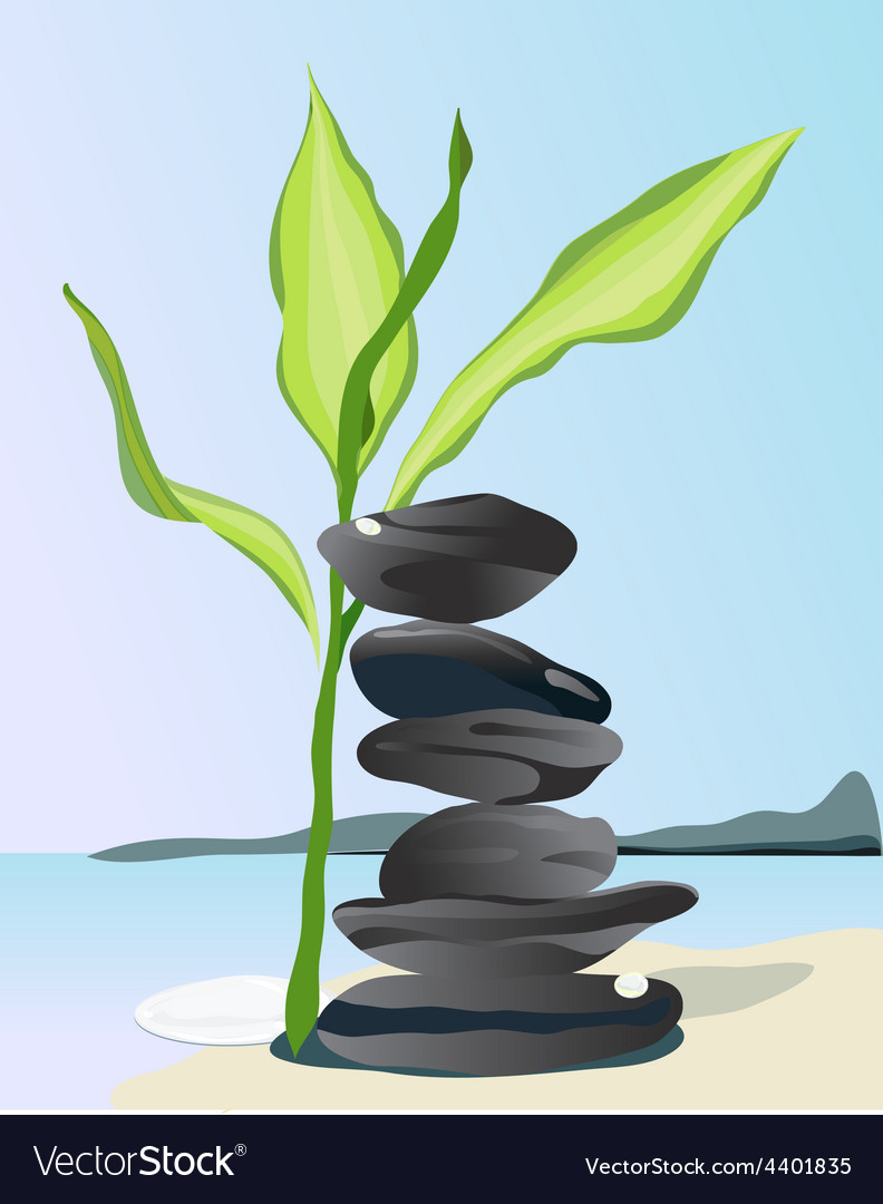 Bamboo plant and black stones on beach vector | Price: 1 Credit (USD $1)