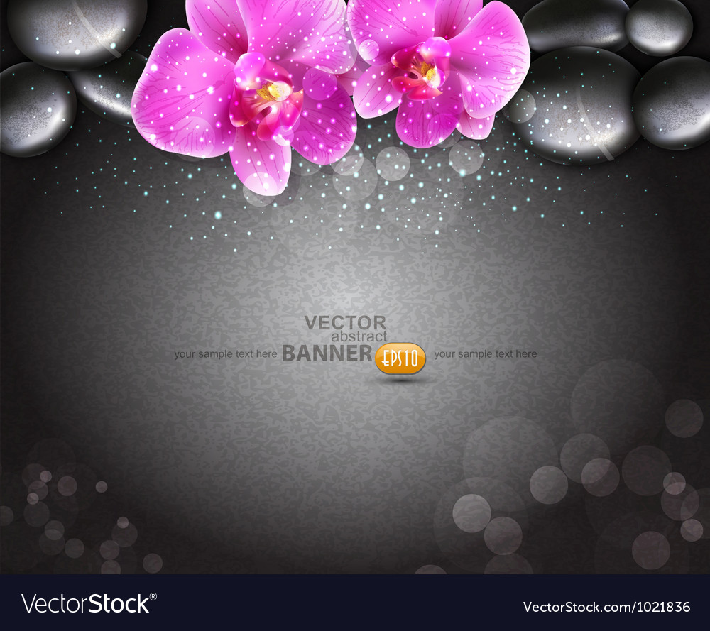 Romantic background with two orchids vector | Price: 3 Credit (USD $3)