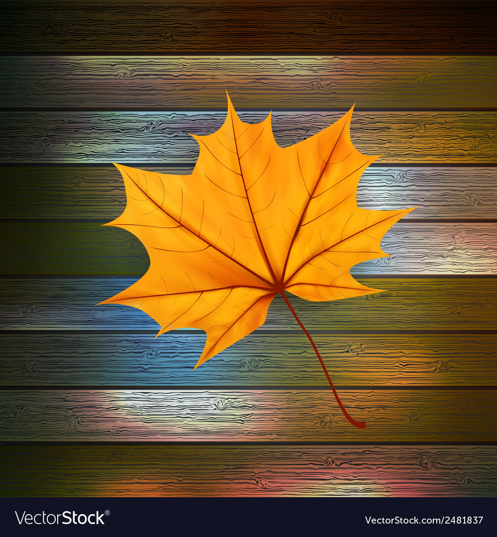Autumn leaves over wooden background eps10 vector   Price: 1 Credit (USD $1)