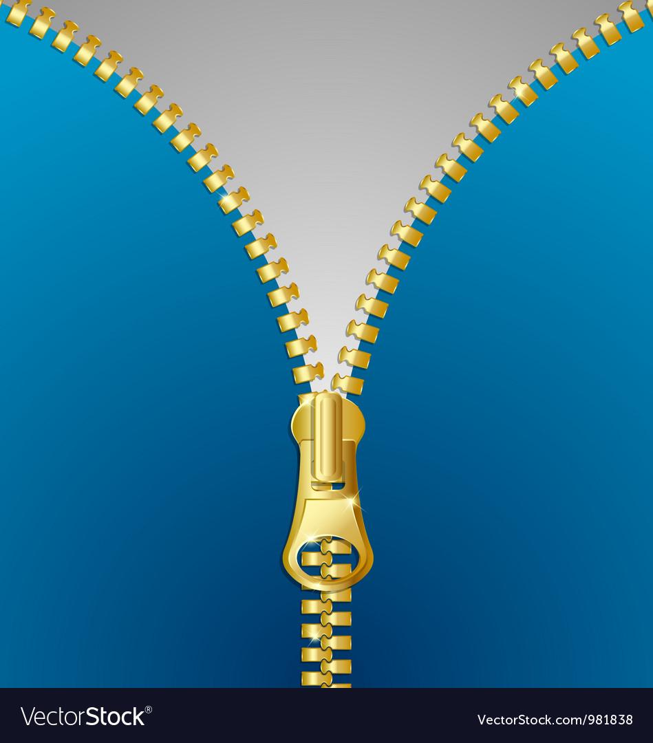 Metallic zipper vector | Price: 1 Credit (USD $1)