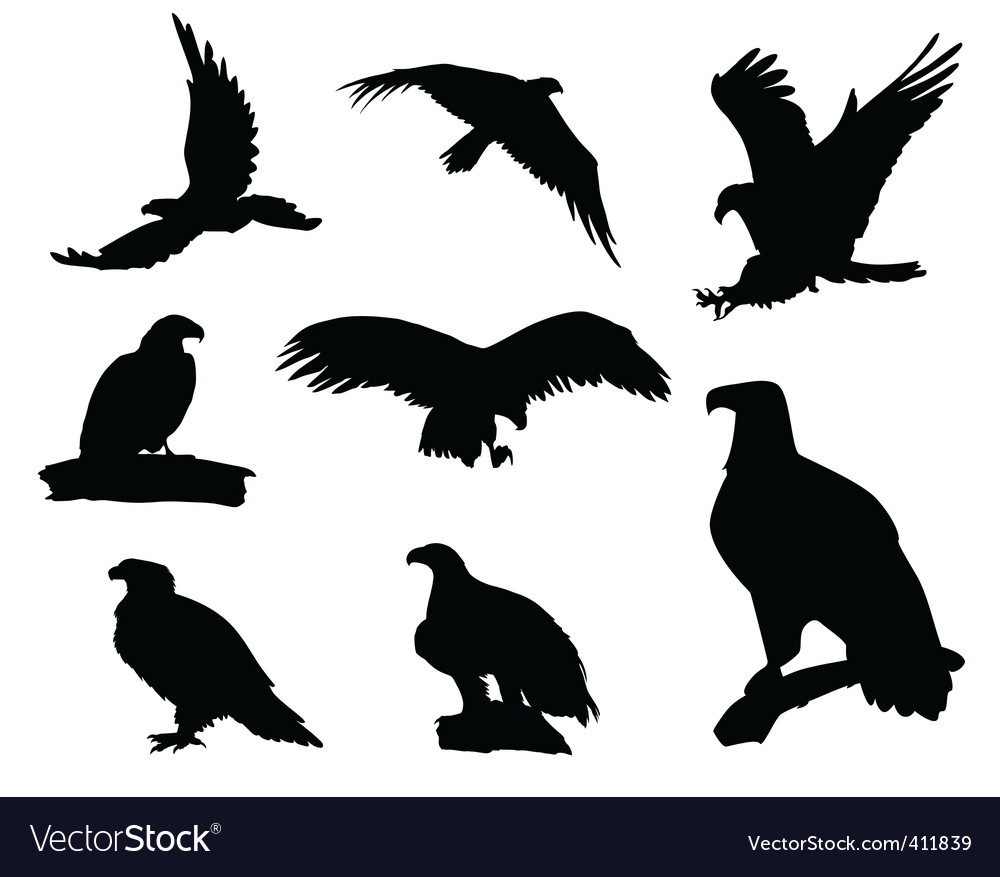 Eagle silhouettes vector | Price: 1 Credit (USD $1)