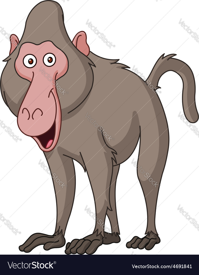 Smiling baboon vector | Price: 1 Credit (USD $1)