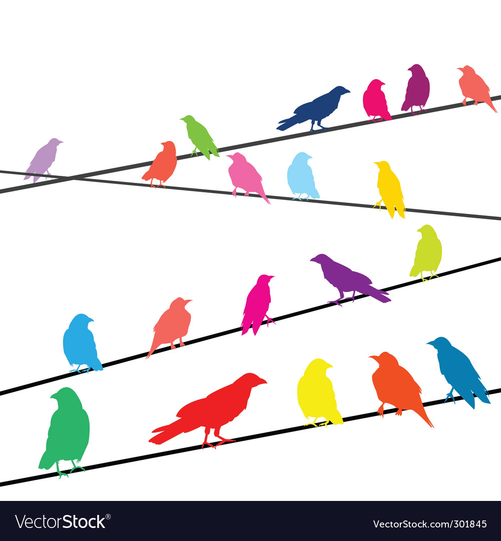 Crows on wires vector | Price: 1 Credit (USD $1)