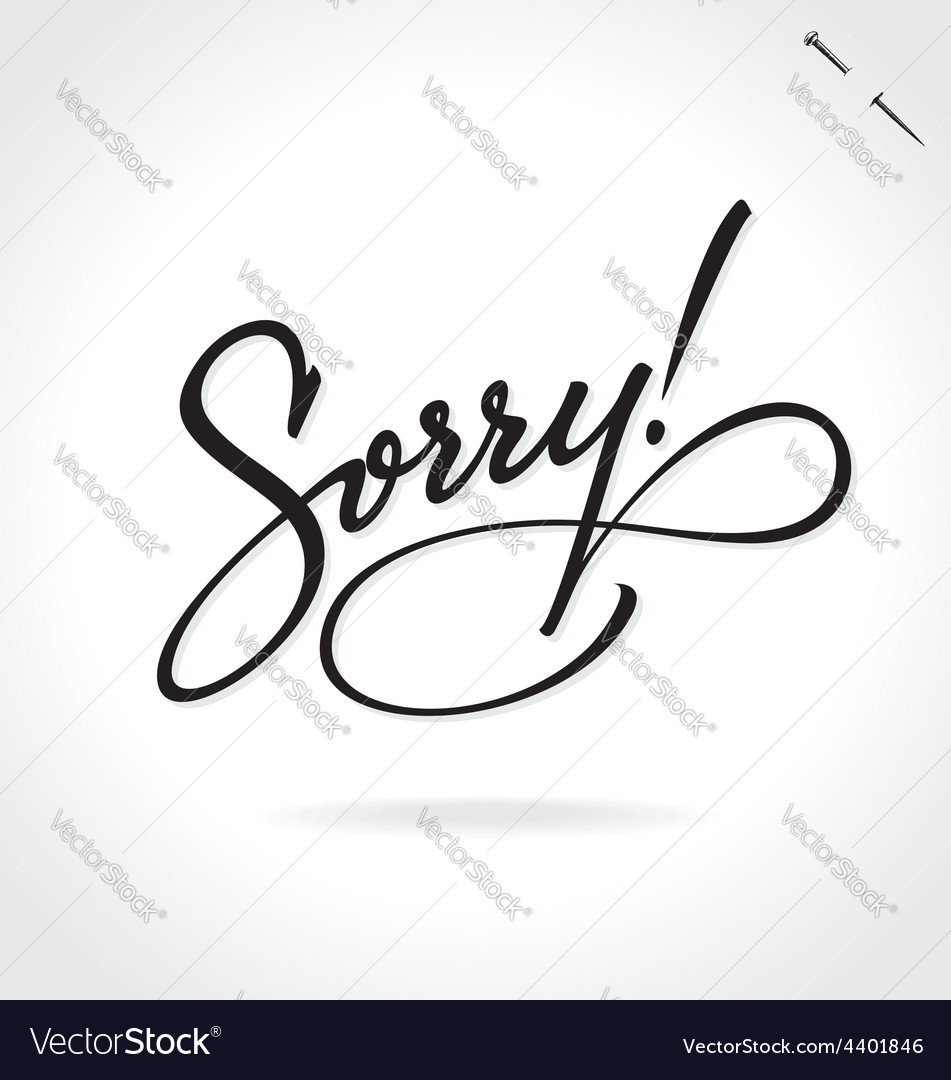 Sorry original custom hand lettering vector | Price: 1 Credit (USD $1)