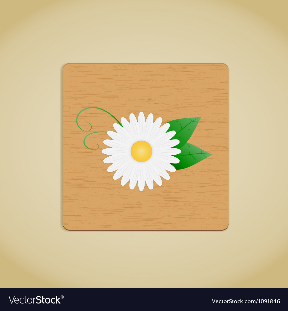 Wooden plate chamomile vector | Price: 1 Credit (USD $1)