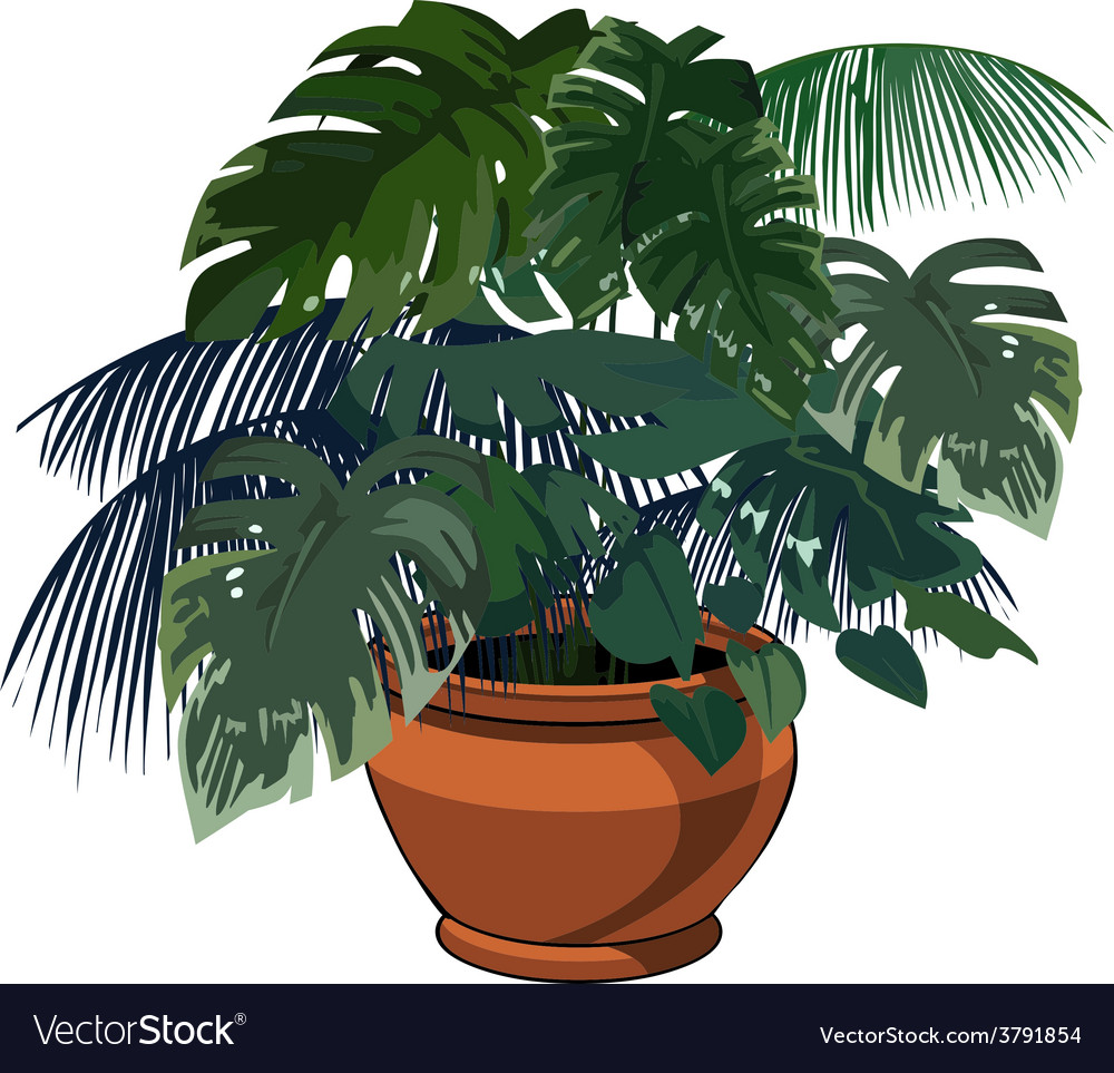 Plants in pot vector | Price: 1 Credit (USD $1)