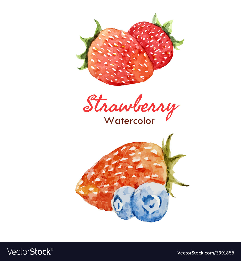 Berry set vector | Price: 1 Credit (USD $1)