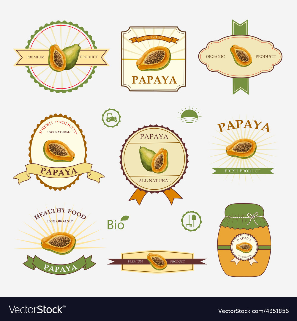 Papaya set of label design vector | Price: 1 Credit (USD $1)