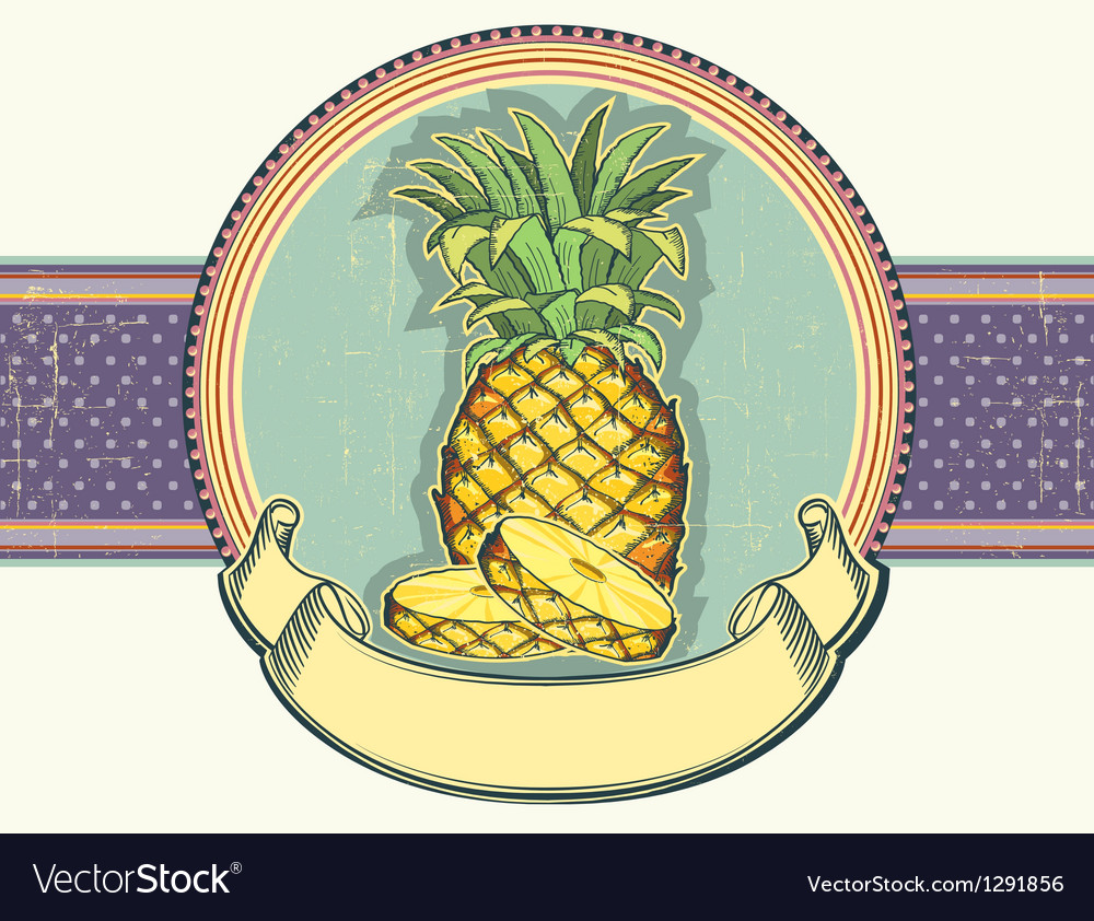 Pineapple vintage label on old paper backgro vector | Price: 1 Credit (USD $1)