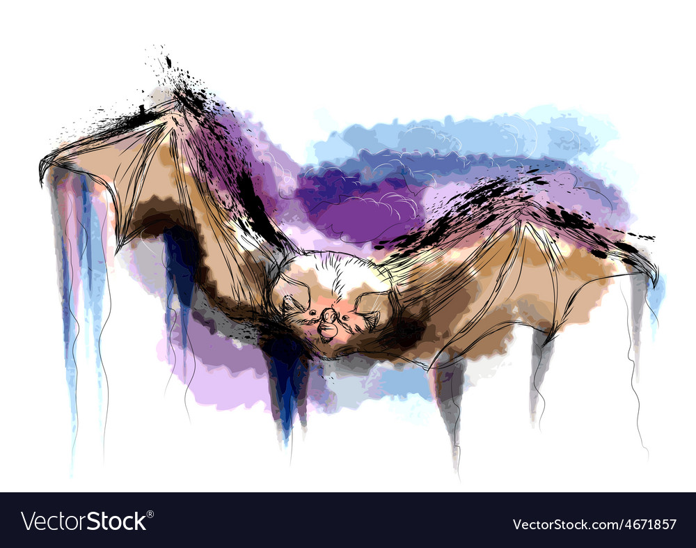 Flying bat vector | Price: 1 Credit (USD $1)