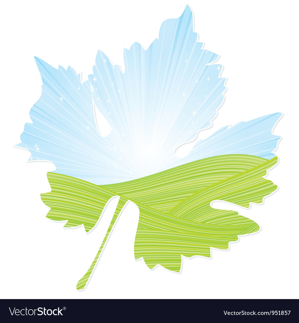 Wine leaf vector | Price: 1 Credit (USD $1)