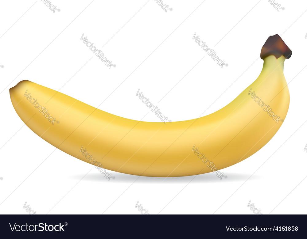 Banan 001 vector | Price: 1 Credit (USD $1)