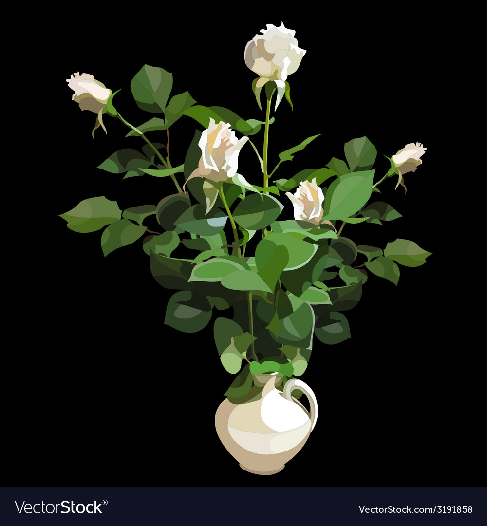 Bouquet of white roses in a white vase on a black vector | Price: 1 Credit (USD $1)