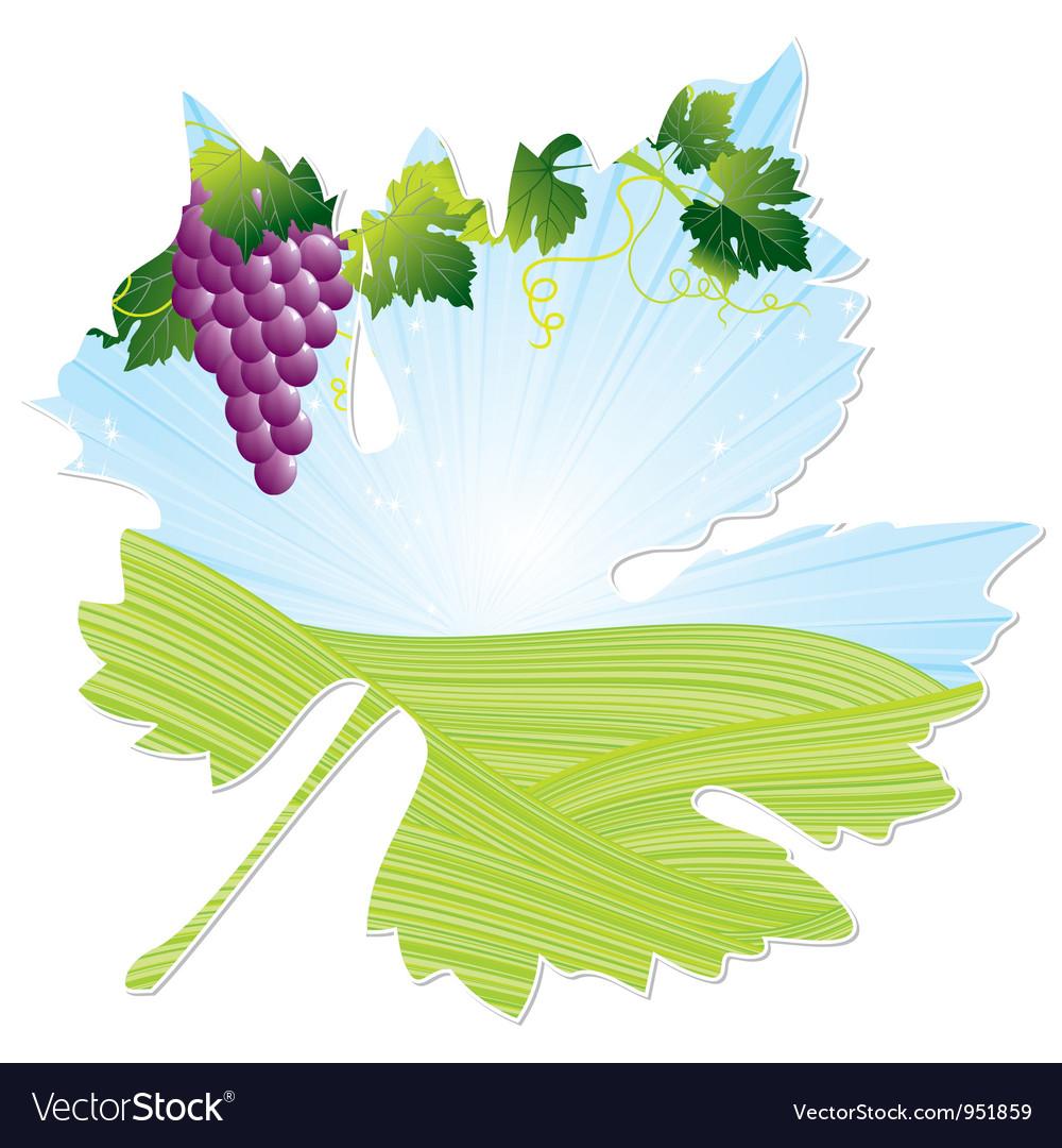 Wine pink leaf vector | Price: 1 Credit (USD $1)