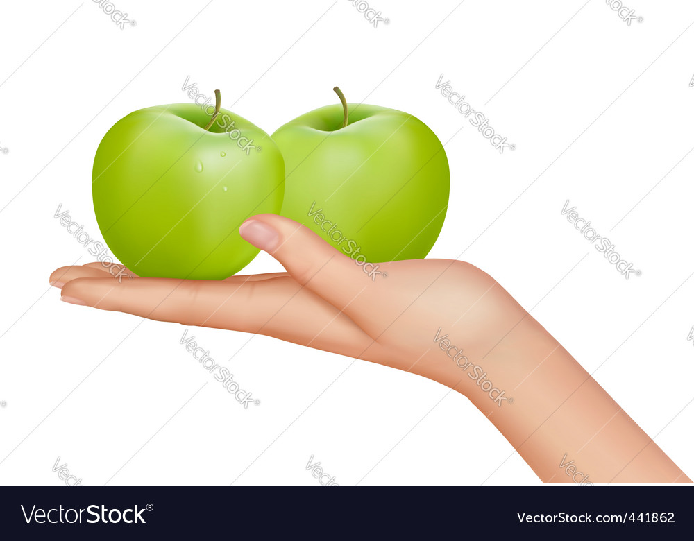 Hand with apples vector | Price: 3 Credit (USD $3)