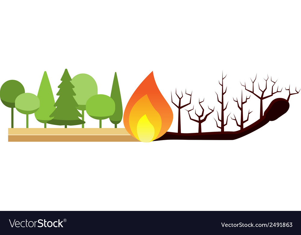Fire in the forest vector | Price: 1 Credit (USD $1)