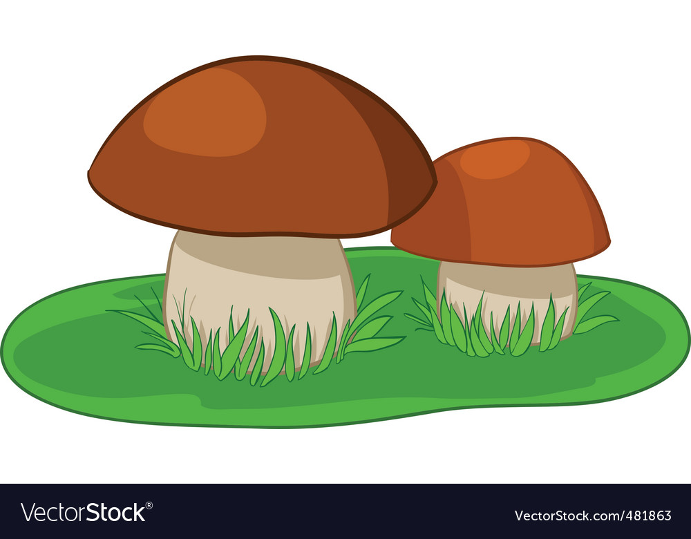 Two mushrooms with green grass vector | Price: 1 Credit (USD $1)
