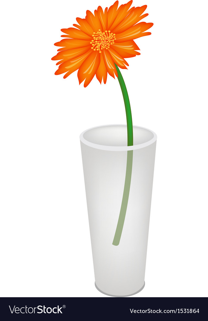 A lovely fresh daisy flower in glass vase vector | Price: 1 Credit (USD $1)