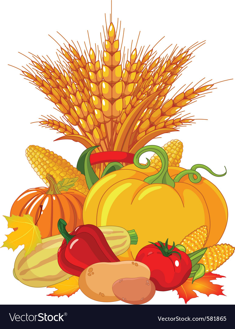 Seasonal design with plump pumpkins wheat vegetabl vector   Price: 1 Credit (USD $1)