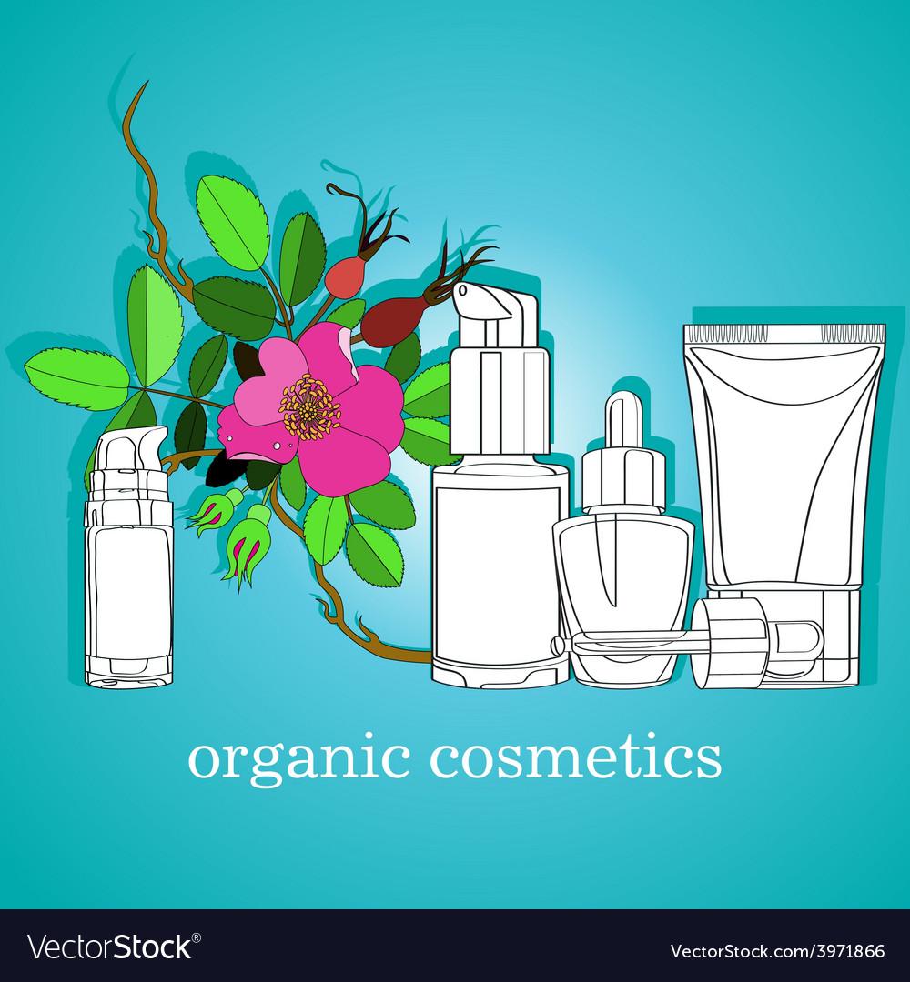 Organic cosmetics vector | Price: 1 Credit (USD $1)