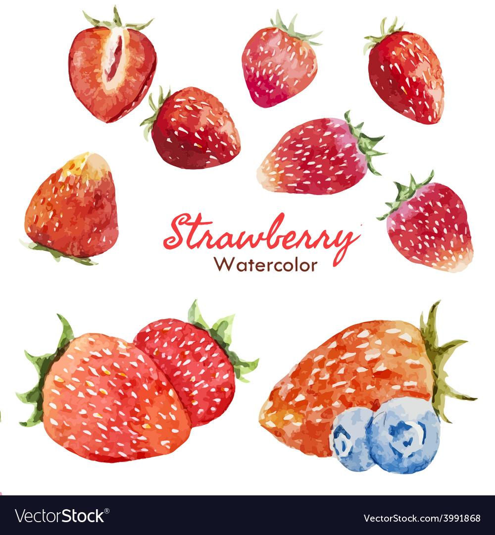 Berry set vector | Price: 1 Credit (USD $1)