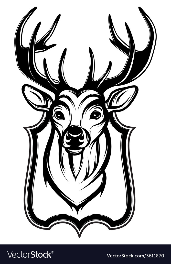 A stag head as a trophy vector | Price: 1 Credit (USD $1)