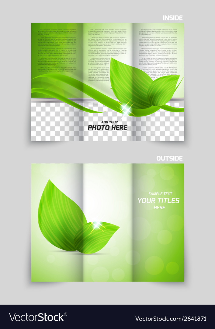 Tri fold brochure vector | Price: 1 Credit (USD $1)
