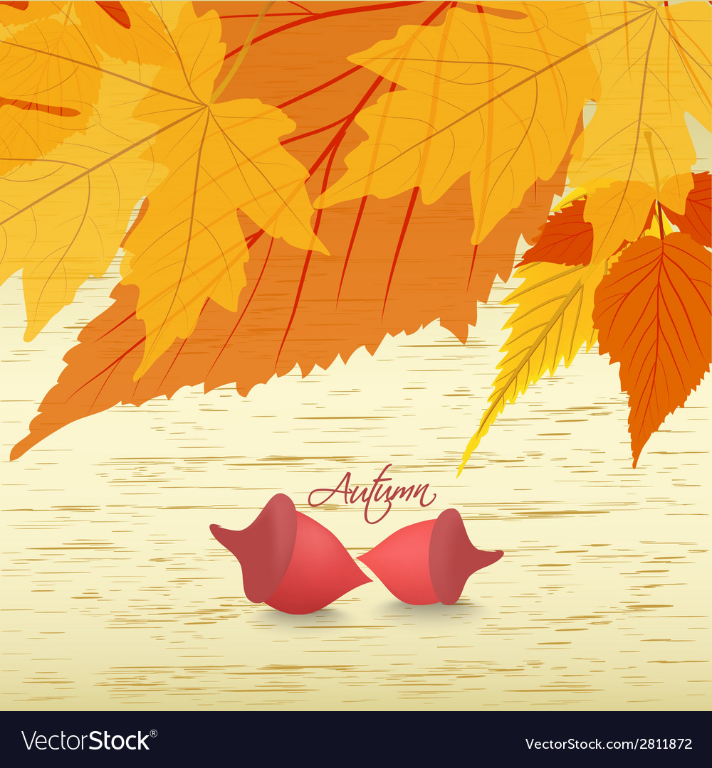 Leaves background with acorns vector | Price: 1 Credit (USD $1)