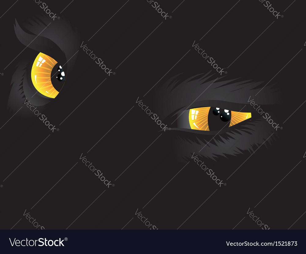 Yellow cat eyes in the dark vector | Price: 1 Credit (USD $1)