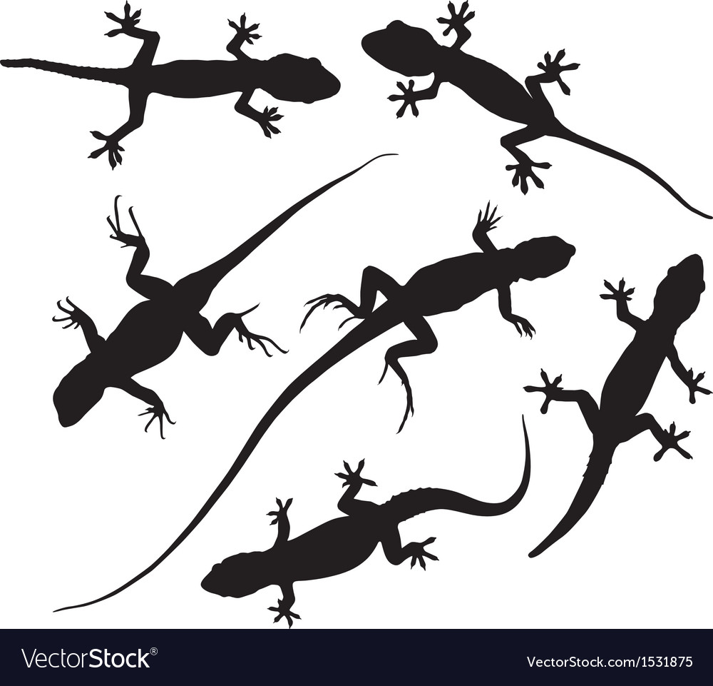 Lizard silhouette vector | Price: 1 Credit (USD $1)