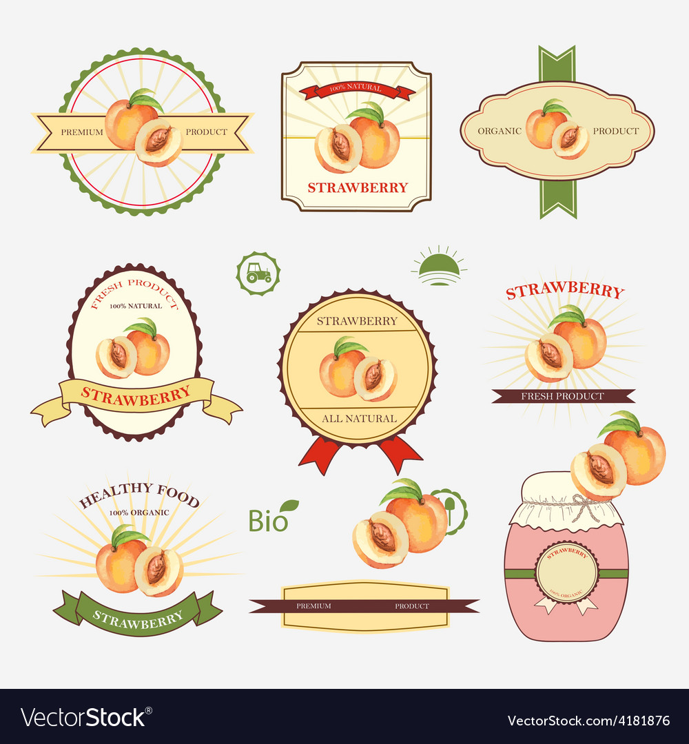Set of label design vector | Price: 1 Credit (USD $1)