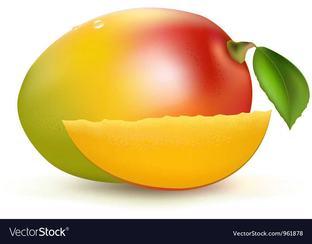 Mango vector | Price: 1 Credit (USD $1)