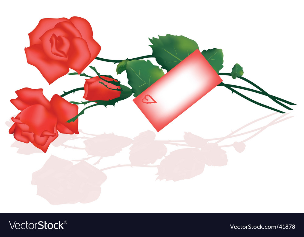 Roses bunch and love letter vector | Price: 1 Credit (USD $1)
