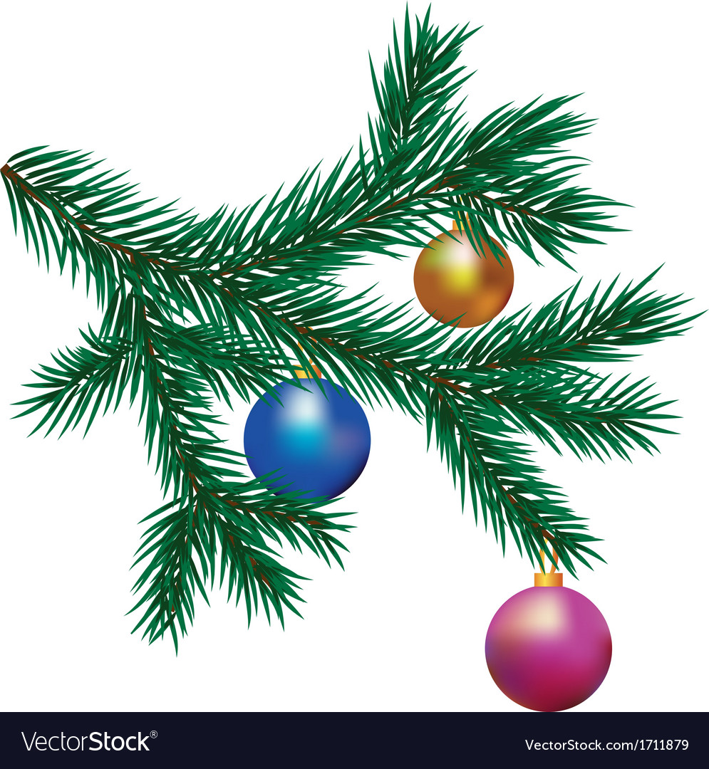 Brunch of fir tree vector | Price: 1 Credit (USD $1)