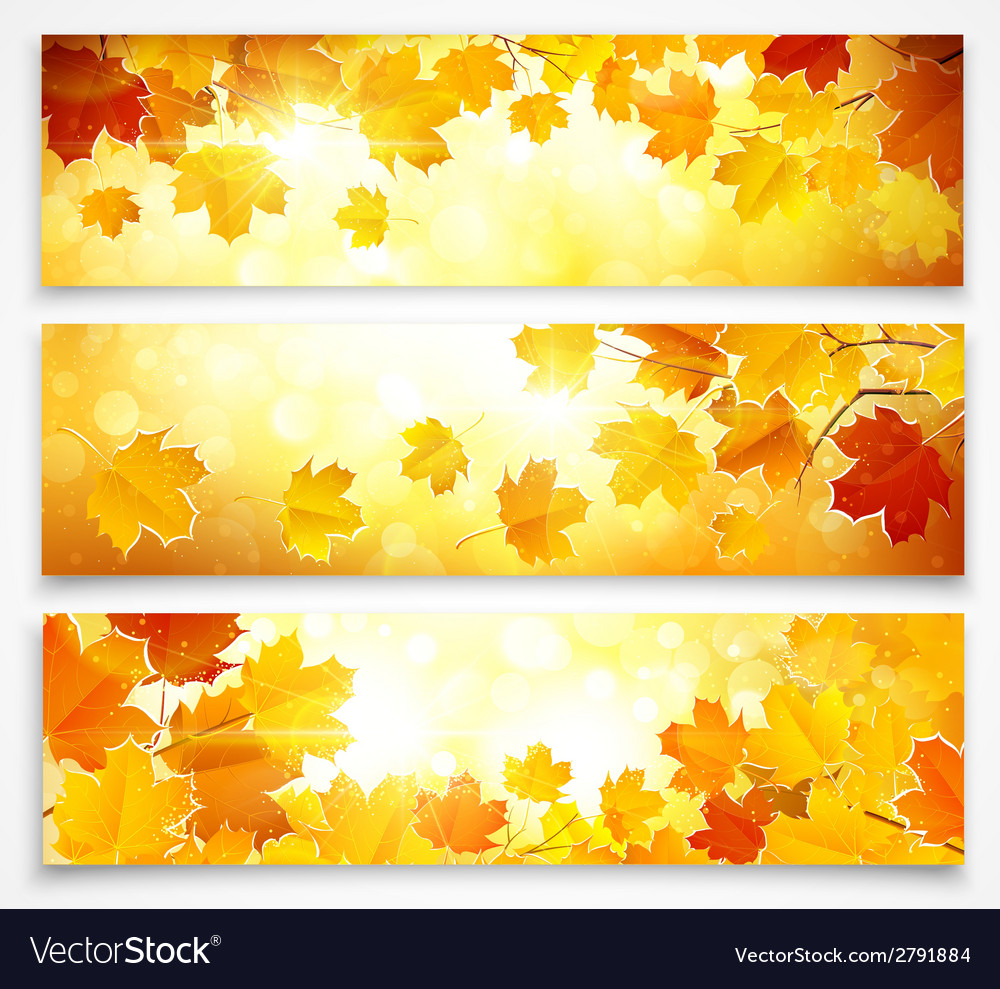 Collection of autumn banners vector | Price: 1 Credit (USD $1)