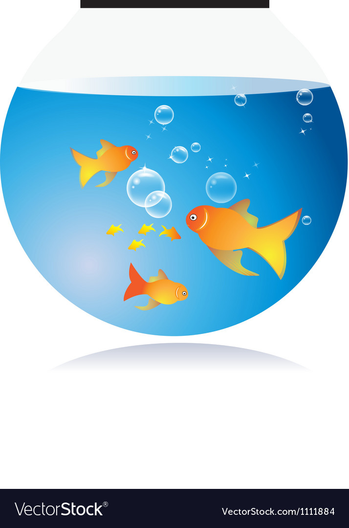Goldfish bow with bubbles vector | Price: 1 Credit (USD $1)