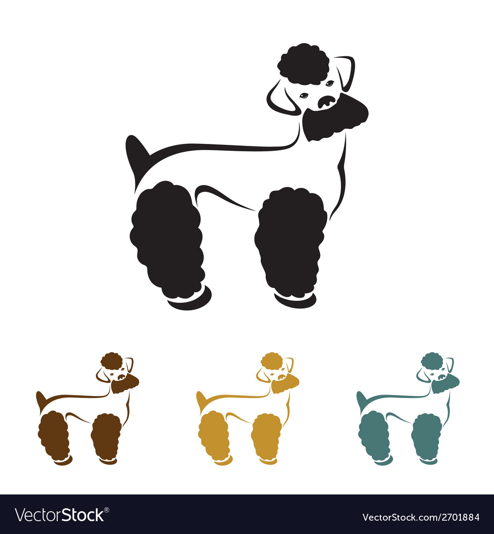 Image of an dog poodle vector | Price: 1 Credit (USD $1)