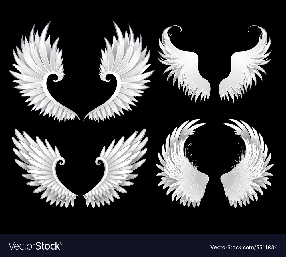 Set of white wings vector | Price: 1 Credit (USD $1)