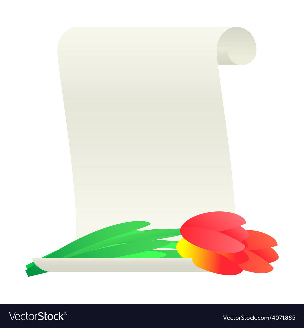 Bouquet of tulips and paper scroll vector | Price: 1 Credit (USD $1)