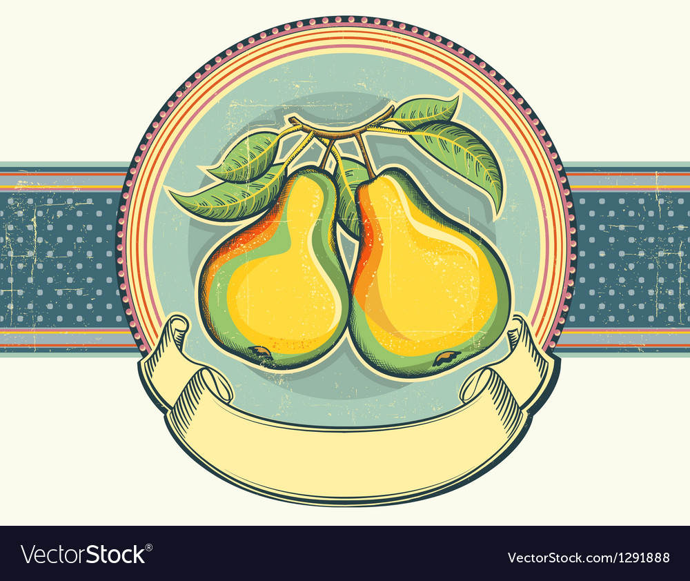 Pears vintage label on old paper background vector | Price: 1 Credit (USD $1)